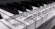 KS Groove(Acoustic Kings) X Music Fellas - Sax Night